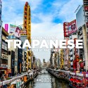 Trapanese 5 (Hosted By Macturnup) mixtape cover art