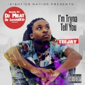 TeeJay - I'm Tryna Tell You mixtape cover art