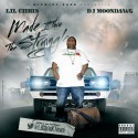 Lil Chris - Made It Thru The Struggle mixtape cover art