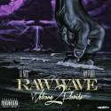 Raw Wave: Welcome 2 Florida mixtape cover art