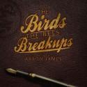 Aaron James - The Birds The Bees & Breakups mixtape cover art