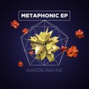 Aaron Wayne - Metaphonic EP mixtape cover art