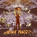 Beak Nasty - The World is Real mixtape cover art