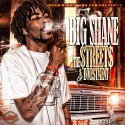 Big Shane - The Streets Investment mixtape cover art