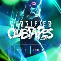 Certified Clubtapes, Vol. 14 mixtape cover art