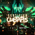 Certified Clubtapes, Vol. 22 mixtape cover art