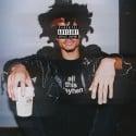 Curtis Williams - Zip Skylark EP mixtape cover art