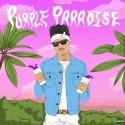 Dimillio - Purple Paradise mixtape cover art