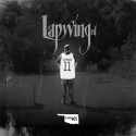 DJ DB405 - Lapwing Rd. mixtape cover art