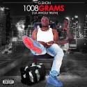 G Shon - 1008 Grams (Da Whole Truth) mixtape cover art