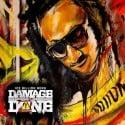 Ice Billion Berg - Damage Is Done 2 mixtape cover art