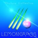 Issue Six: Lemongrass mixtape cover art