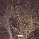 Kodyak - The Place I Call Home mixtape cover art