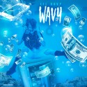 Lil Davy - Wavy mixtape cover art