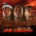 Lil Murda, L Roy Da Boy & Lil Vac - King Ghidorah mixtape cover art
