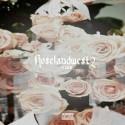 LL Coogi - Roseland West 2 mixtape cover art