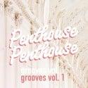 Penthouse Penthouse - Grooves mixtape cover art