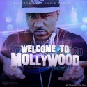 Problem - Welcome To Mollywood mixtape cover art