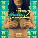 Ricky Shabazz & The Boom Bap Boys - Free Shabazz 2 mixtape cover art