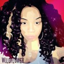 Sagan - Wild Flower EP mixtape cover art