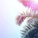 Skepp & Hawk - Rinse & Repeat mixtape cover art