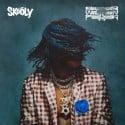 Skooly - BAcCWArdFeELiNgS mixtape cover art