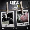 Square Bizness Byrd - Going Fed II: The United States VS Byrd mixtape cover art