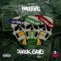 S.Y.E - Check Gang mixtape cover art
