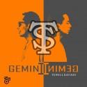 Terrel Safadi - Gemini mixtape cover art