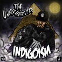 The Underachievers - Indigoism mixtape cover art