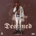 Tizzle - Destined mixtape cover art