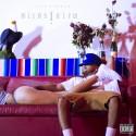 Tyler Thomas - Birds I View mixtape cover art
