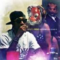 Willy J. Peso - Destination Cloud 9 mixtape cover art
