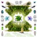 WUMP 2k Compilation mixtape cover art