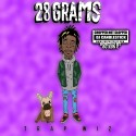28 Grams (Chopped Not Slopped) mixtape cover art