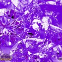 Drake & Future - WATTBC (Chopped Not Slopped) mixtape cover art
