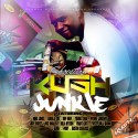 Kush Junkie mixtape cover art