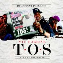 Vic Damone - T.O.S. (Talk of Southside) mixtape cover art