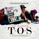 Vic Damone - T.O.S. (Talk of Southside) mixtape cover art