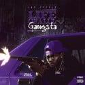 Jay Fizzle - Life Of A Lul Gangsta mixtape cover art