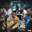 Street Lingo 7 mixtape cover art