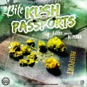 Bite Da Don - Kush N Passports mixtape cover art