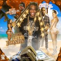 Whole Lotta Money (Hosted By Soulja Boy & Mingo Baby) mixtape cover art