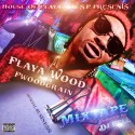 Playa Wood - Official Business mixtape cover art