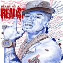 Plies - Diary Of A Realist mixtape cover art