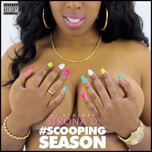 strona d   scooping season   dj schemes