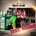 Blanka Bands - Still Boomin mixtape cover art