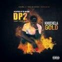 Khochela Gold - Don't Panic 2 mixtape cover art