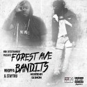 Whoppa & StayTru - Forest Ave Bandits  mixtape cover art