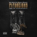 Shaun Michaels - 14 Foreigns mixtape cover art